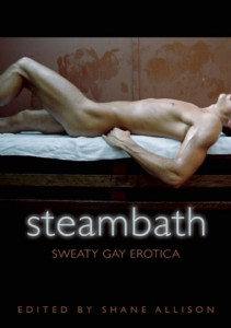 steambath cover